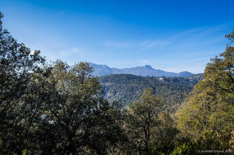 El Montseny desde la bajada del Castell de Montsoriu por el bosque