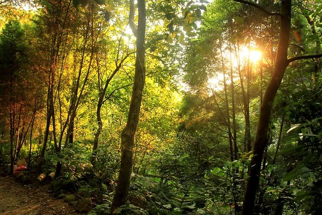 新竹芎林鄉-自然谷美景