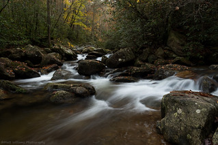 Jacob Fork River | by Matt Williams Gallery