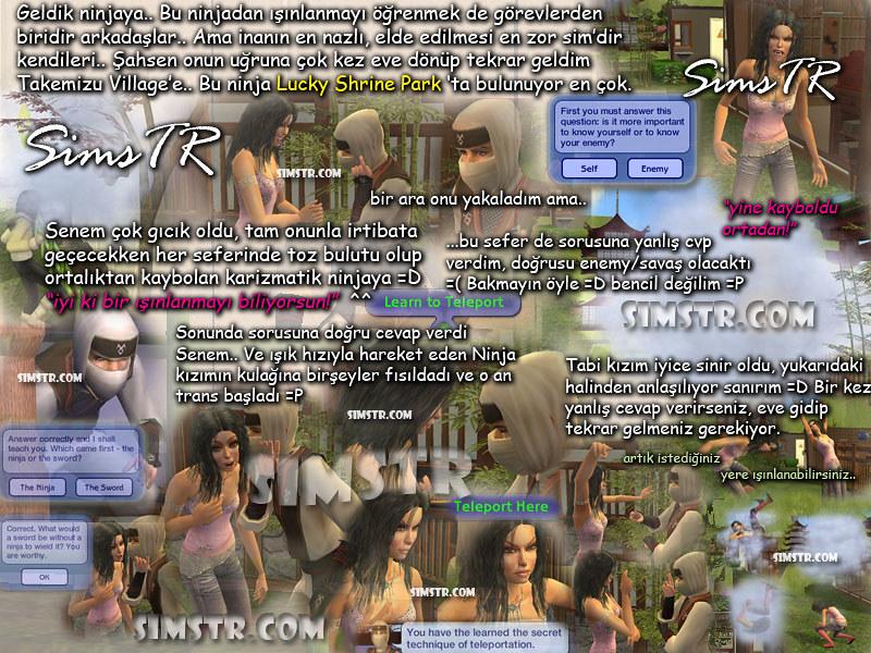 The Sims 2 Bon Voyage Ninja