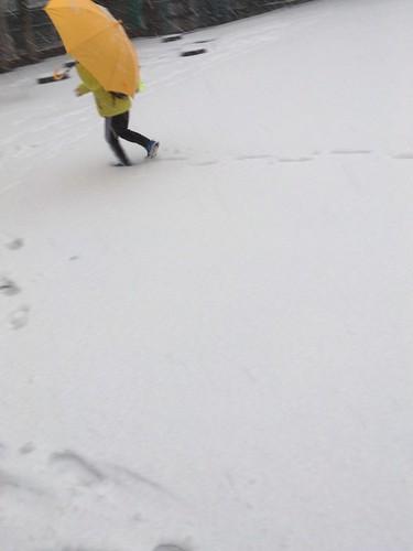 東京の雪 2018.1.22