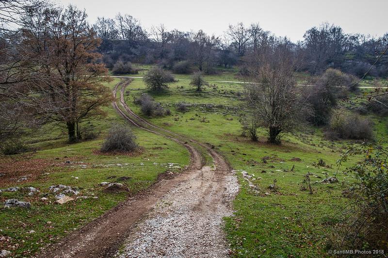 Bajando del Arco de Portupekolece hacia la Senda del Pastoreo