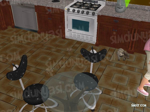 The Sims 2 Pets Give Birth to a Kitten