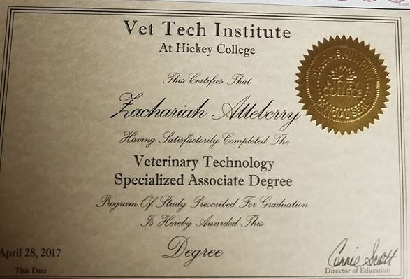vet tech degree