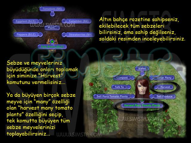 The Sims 2 Seasons Gardening Bahçecilik Harvest