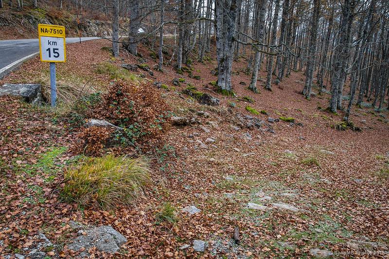 Hacia el dolmen de Olaberta