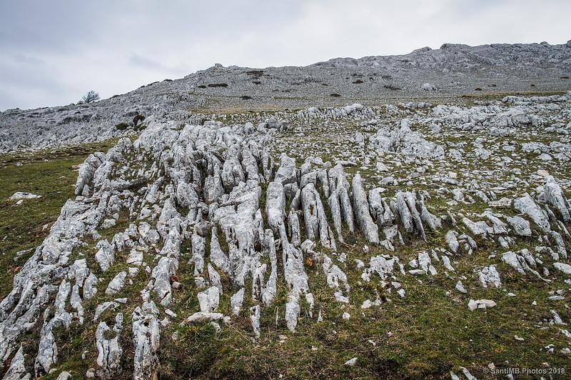 Textura de la roca junto a la Senda del Pastoreo