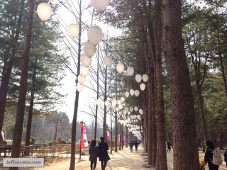 Nami Island - The Walking Path | by deffa_utama