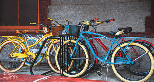Image of colorful bikes at Flagler College