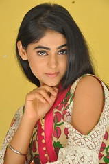 Palak Lalwani Latest Stills