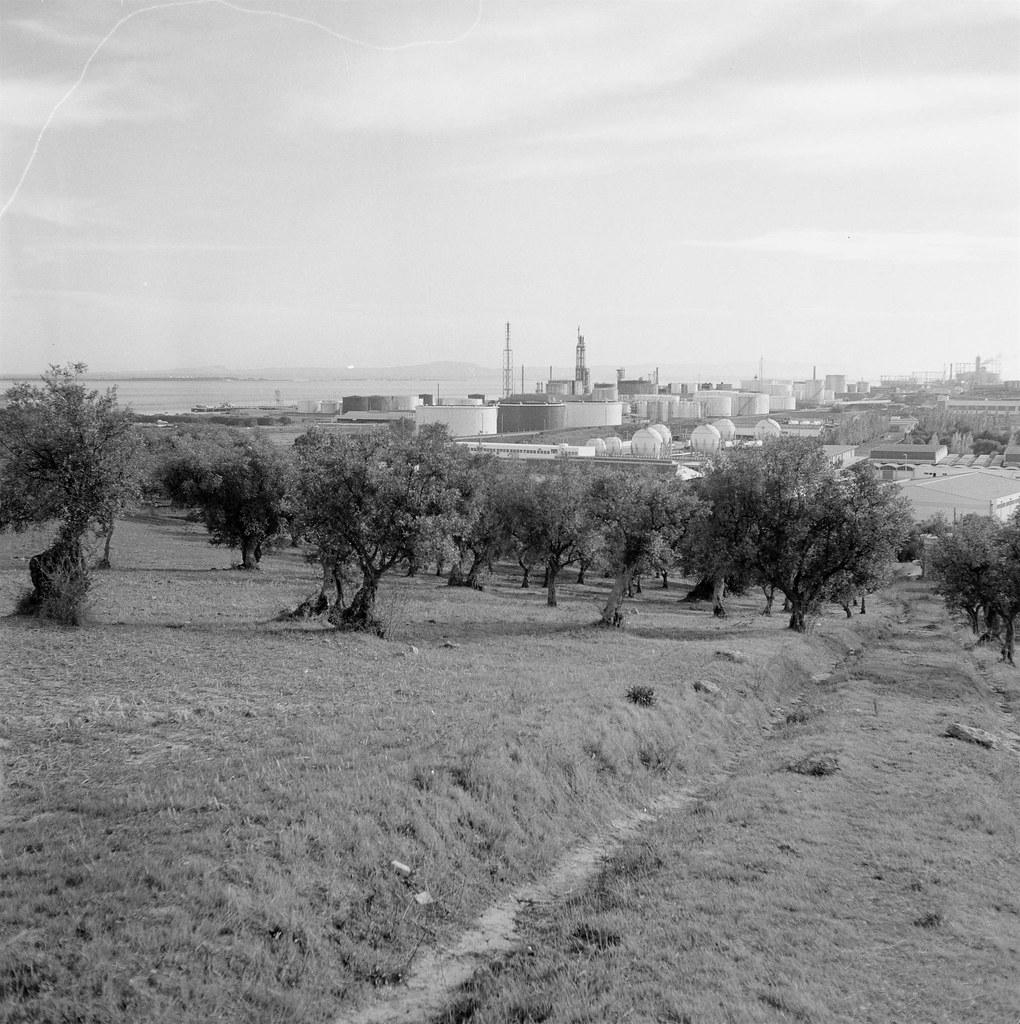 Sacor, C. Ruivo (J.Geraldes, 1967)