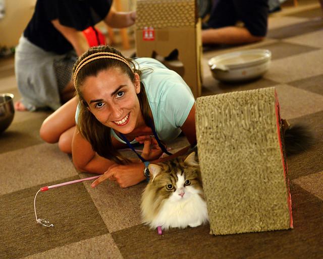 Diana con uno de los muchos gatos del Cat Café de Tokio que visitamos en Japón