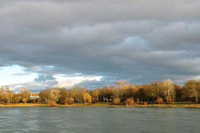 Parkinsel Ludwigshafen am Rhein ... Spaziergang Ende Dezember 2017 ... Fotos: Brigitte Stolle, Mannheim