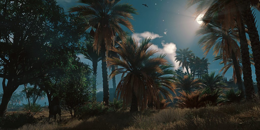 """""""Riding In The Night"""" 