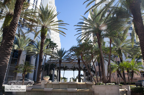 Driveway area of Loews Miami Beach Hotel | by thewanderingeater