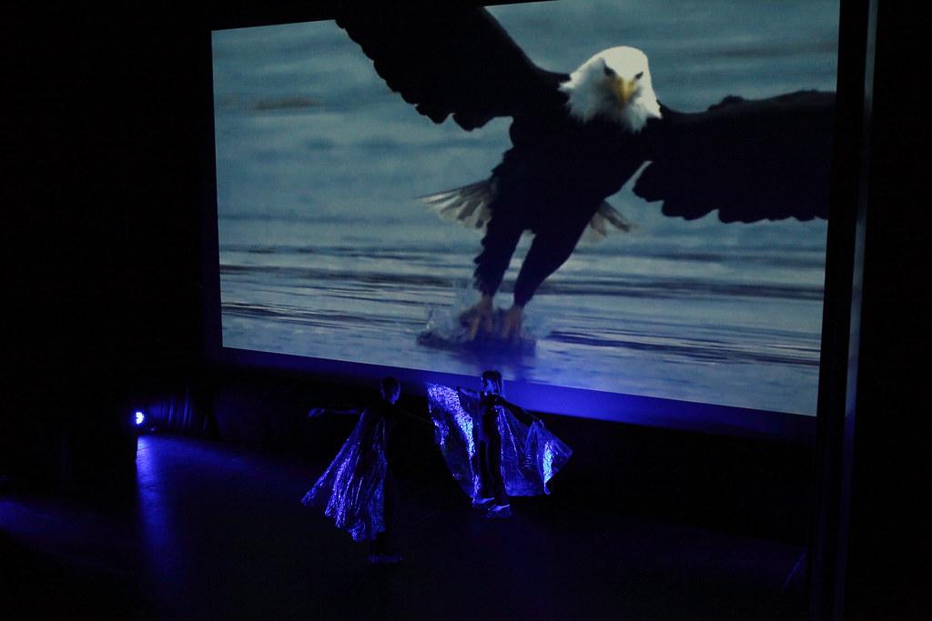 松德里歐國家公園影展頒獎典禮的串場表演。
