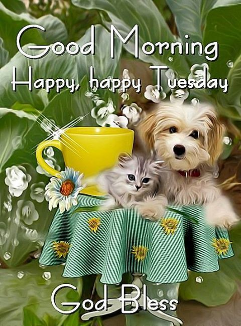 Tuesday Quotes Good Morning Happy Happy Tuesday God Bl Flickr