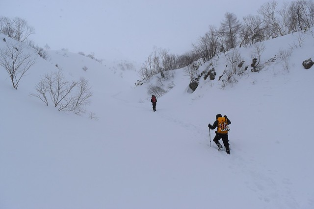焼岳 雪の登山道