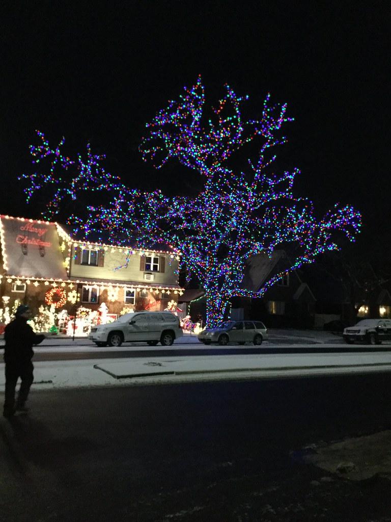 Christmas Tree, Queens, NY | Jill Erickson | Flickr