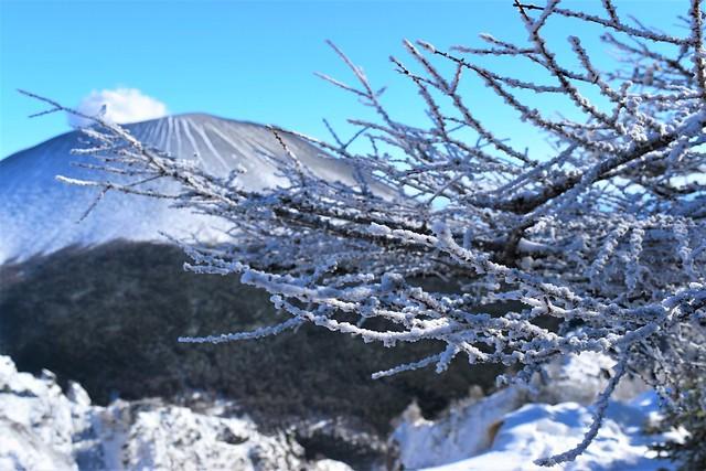 浅間山の霧氷