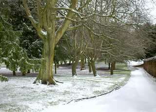 Snowy path at Ashton Park | by Tony Worrall