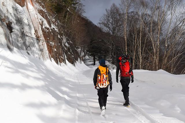 焼岳登山口までの林道歩き