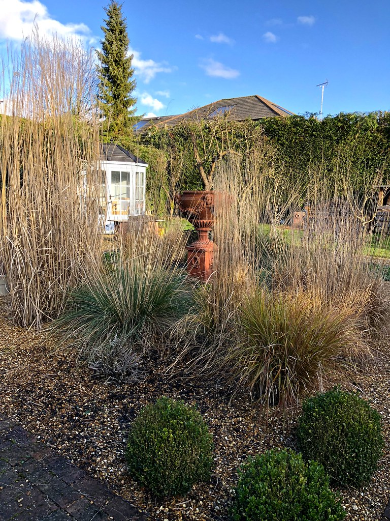 Old Swan House | The garden in winter - tidying up | Herry Lawford ...