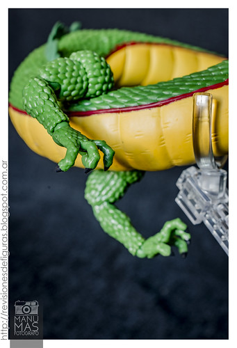 S.H.Figuarts - Shen Long (Dragon Ball Z) | by manumasfotografo