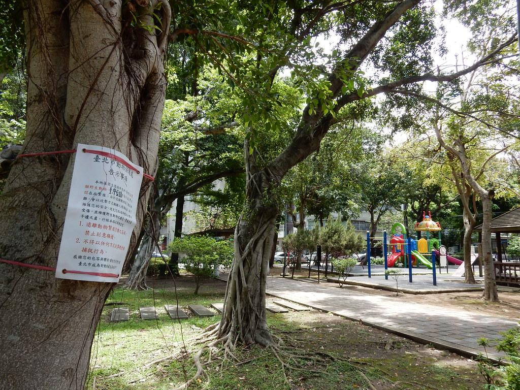 台北市動保處在台灣藍鵲築巢地周圍設立告示牌,提醒行人不可騷擾保育類動物台灣藍鵲。圖片提供:台北市動保處。