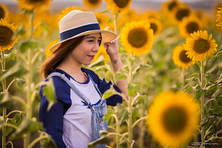 Sunflowers and a girl | by tony.liu.photography