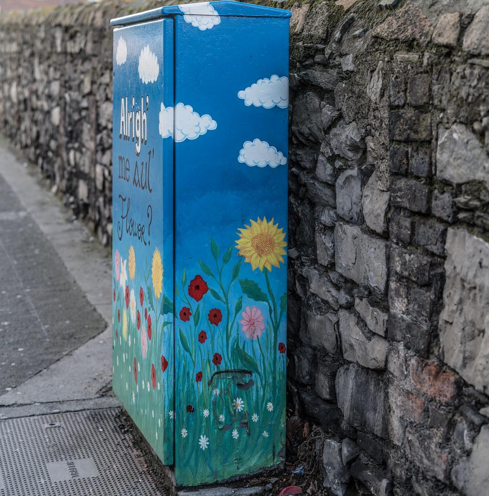 STREET ART BY ALISON O'GRADY 001