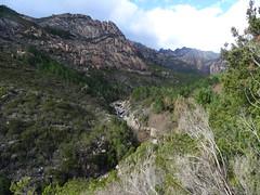 Vue sur la Figa Bona depuis la piste du Chemin de Paliri/Figa Bona
