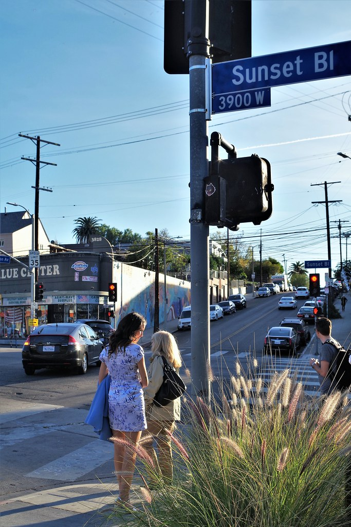 People Investigating Sunset Blvd. | by Joey Z1