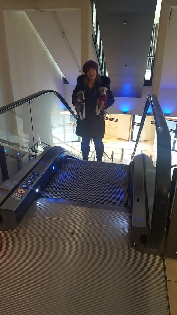 Rauf geht es über die Rolltreppe