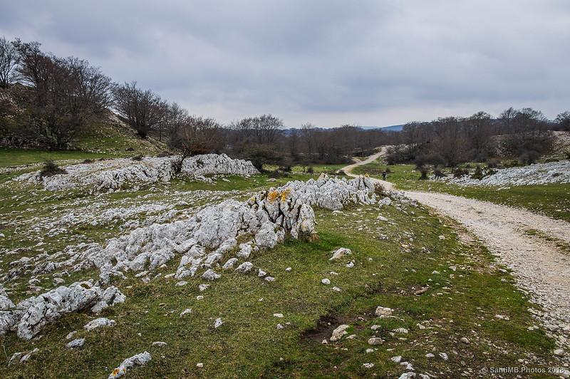 Senda del Pastoreo entrando en Urbasa