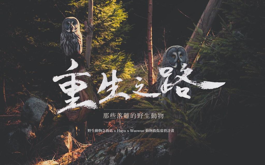 《重生之路》集資計畫主視覺。圖片來源:窩窩。