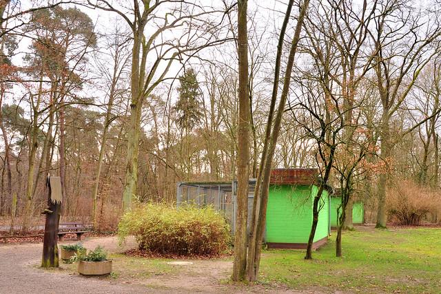 Warum singen Vögel? Vogelorgel im Vogelpark Käfertaler Wald Mannheim