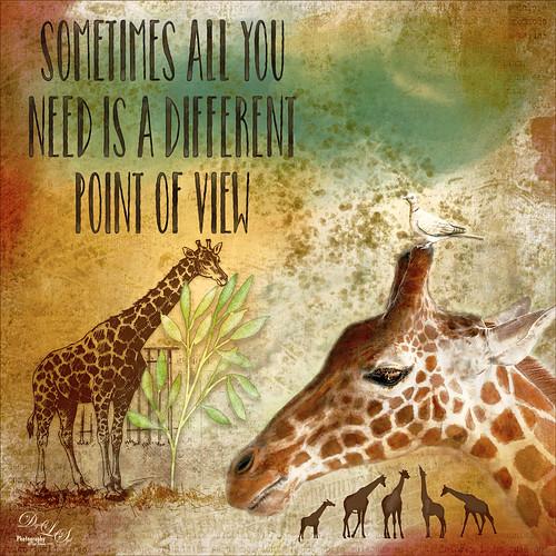 A composite image using giraffes