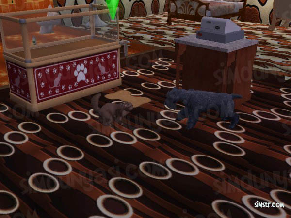 The Sims 2 Pets Chase Command