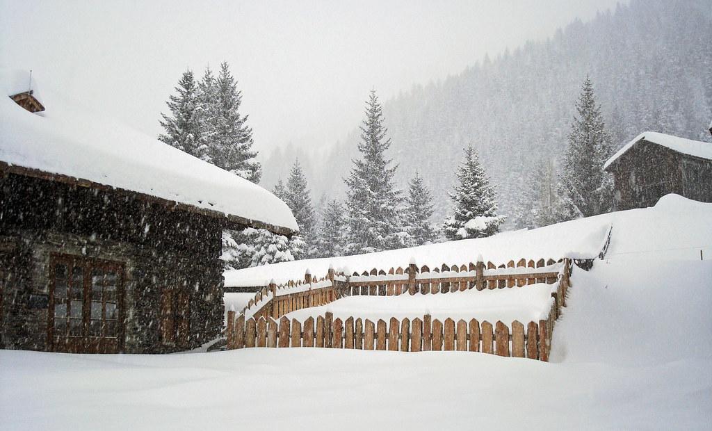 554 Kleiner Garten Im Schnee Gertraud Flickr