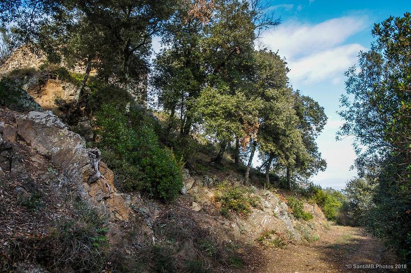 Camino cerca de la Torre de les Bruixes