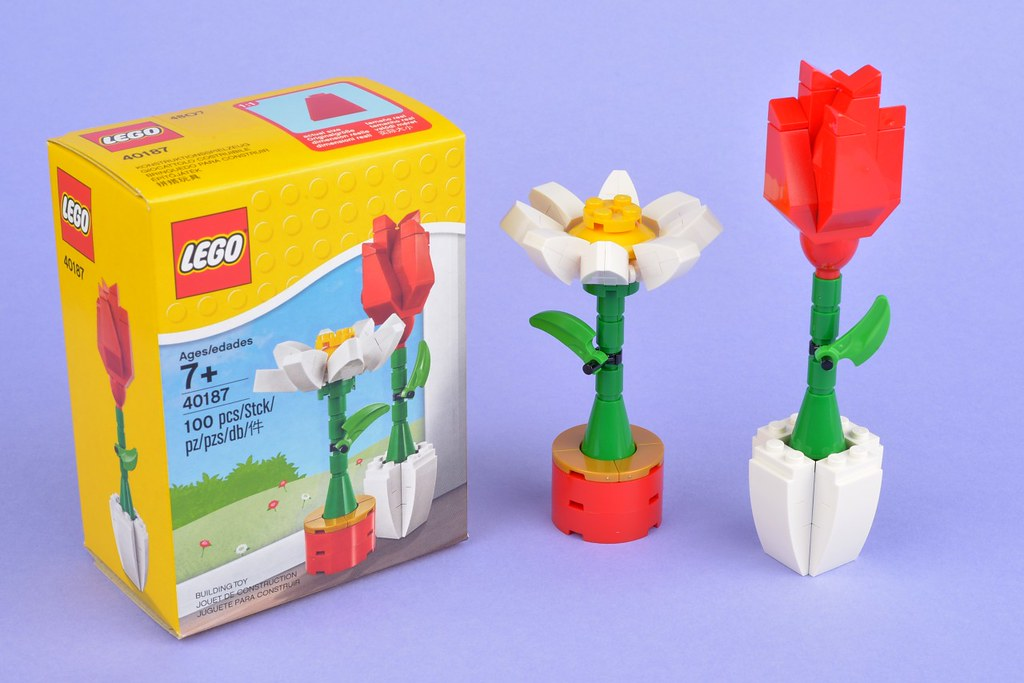 Review 40187 Flower Display Brickset Lego Set Guide And Database