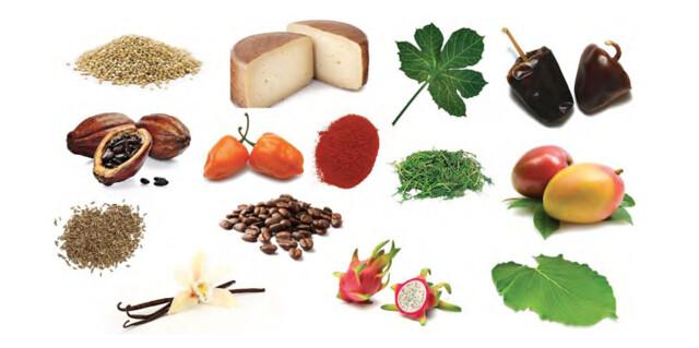 Ingredientes 1
