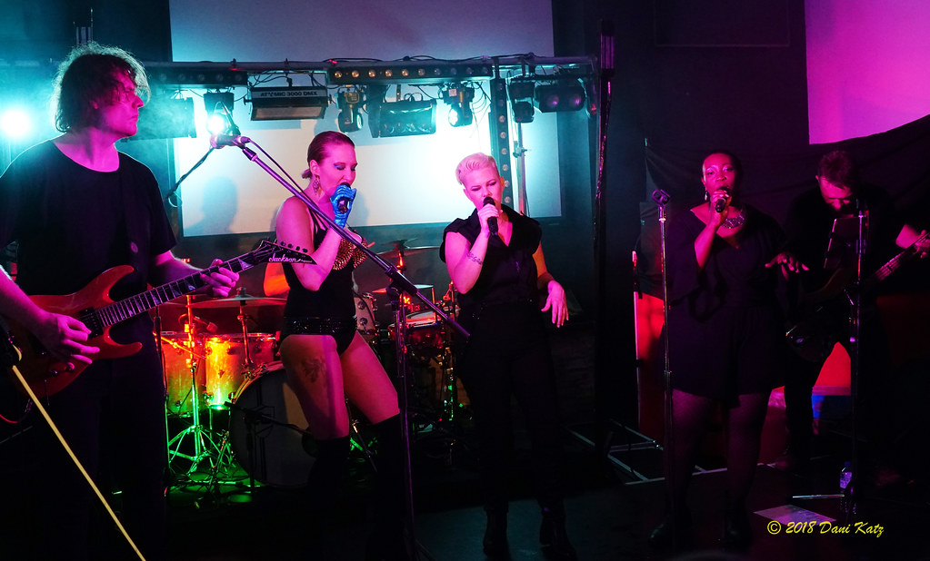 Pink tribute show gold coast