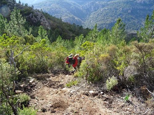 Dans la descente de Fugulina vers Piscia Cava
