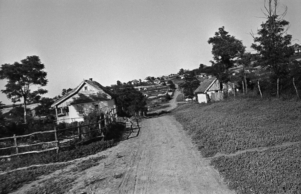 Берега реки Донец. Окрестности Святогорского монастыря. 1947г.
