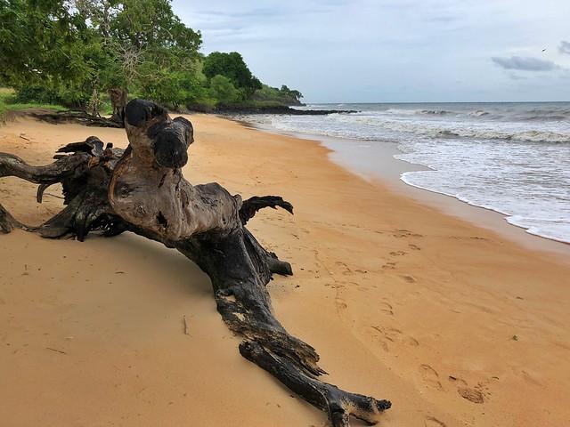 Praia Tamarindos (norte de Santo Tomé en Santo Tomé y Príncipe)