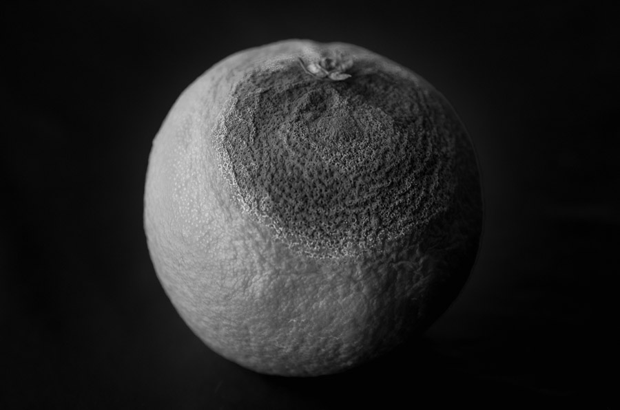 &quot;Naranja&quot; - Jose Ángel Niño <br />&#40;Anikuni&#41;