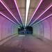 Walking Tunnel at Hoboken