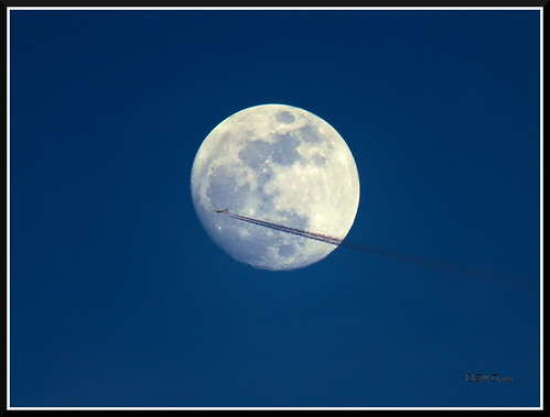 American Airlines & moon | by cowestoutdoors